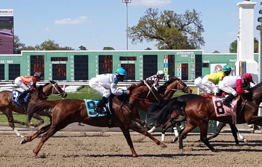 Louisiana Horse Racing Betting Sites Fair Grounds Race